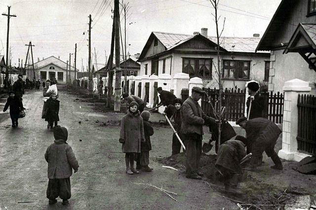Старый Жирновск
