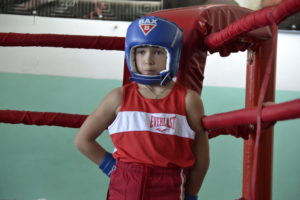 Бокс Линёво