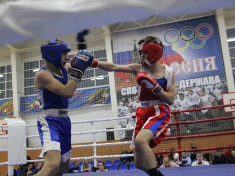 жирновск бокс